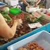 【千葉県】大原漁港「港の朝市が最高に美味しい!」※写真多め