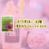 Pinkfongの幼児向けフォニックスDVDがおすすめ!発音よくなる♪【0歳1歳2歳~okおうち英語教材】