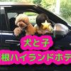 子連れ犬連れで箱根ハイランドホテルに泊まったら快適だった!