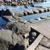 太平洋の天然温泉【水無海浜温泉】