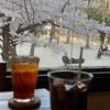 【セカンドハウス東洞院店】桜の見える京町家の人気スパゲティ屋さん🍝