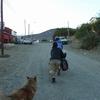 2011年 カラファテ出発 再び荒野へ