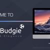 Ubuntu-budgie-remixの日本語化について。少し癖があるので。