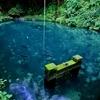 御瀧神社の湧水池(福島県国見)