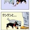 【犬漫画】自宅警備隊は臭いを嗅いでパトロール