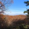 《群馬藤岡》【1】八高線&めぐるんで庚申山総合公園ハイキング