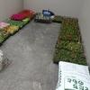 「ふれあい花壇」の準備
