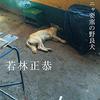 予約!オードリー若林新刊本(表参道のセレブ犬とカバーニャ要塞の野良犬)