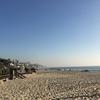年末のLA旅行 ~おすすめのラグーナビーチ~