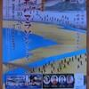 【マラソン】しまだ大井川マラソン、3時間03分57秒で完走