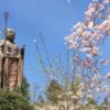軽井沢周辺で楽しめる!東信の桜の名所まとめ10選