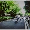 【近況報告】大学生になりました。