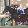 タイムフライヤー |昇格初年度ホープフルステークス優勝 ハーツクライ産駒東京競馬場以外でのGⅠ初勝利