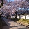 プラスホームにいちばん近い世界遺産「醍醐寺」