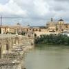 スペイン旅行記(4) コルドバとセビリア  メスキータでイスラムとカトリックが混じり合った文化を味わう。