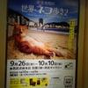【池袋西武ギャラリー】岩合光昭の世界ネコ歩き2写真展