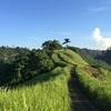 バリ島ウブドでじゃらんじゃらん!早朝散歩で自然満喫