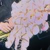みりりん、宝塚大劇場ご卒業