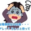 今日は箱根駅伝の往路・・・ アレッ? ちょっと待って!!