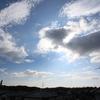 8月22日(土)晴れのち曇り