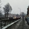 オランダにも雪がふりました。近況報告。