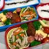 遠足弁当〜青椒肉絲・だし巻き・マカロニサラダ〜
