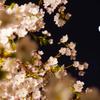 花は盛りに、月は隈なきをのみ見るものかは。