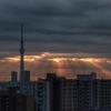天気と空と:2020-02-01〜02-06