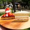 【ケツァール】すぐ売り切れること必至の絶品ケーキ(西区高須)