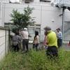 庭木を美しく整える剪定講座