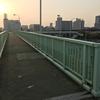 【品川区八潮】首都高速中央環状線の上に架かるデカい歩道橋を渡る【大井北埠頭歩道橋】