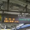 SFC修行第8弾 1・2レグ目 関西→新千歳→稚内 搭乗記と青春18きっぷを使った関西空港前日入りの様子