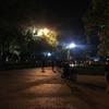 少し夜のバンコクを歩きました。