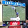 横浜スタジアム『横浜DeNAベイスターズvs西武ライオンズ』交流戦(野球ネタ)