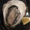 浦和 岩牡蠣 生1