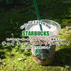 スタバの注文方法限定メニュー!スパイス香るフラペ『チャイチョコレートフラペチーノ』 / Starbucks Coffee