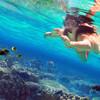 イスラ・ムヘーレスの思い出・メキシコのリゾート地・カンクンに近い島