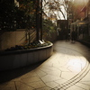 GRⅢで12月の光と影を撮る