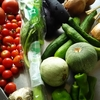またまた作りました。夏野菜たっぷりのラタトゥイユ♪そして、今夜のおやつはラング・ド・シャ。
