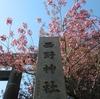 西野神社境内の春の景色(その1)
