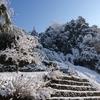 3月の粉雪