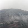 20190211 高松にも雪が降った。
