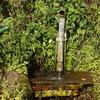 国本の湧水を汲みに行ったら、地元のおっちゃんに更に良い湧き水を教えてもらう