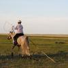 2012夏内モンゴルの旅4日目【大草原の小さなゲル】