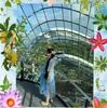 シンガポール旅行記2019♪ ガーデンズバイザベイ クラウドフォレスト♪