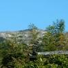 大山登山〜雪解けの大山はせせらぎ山道