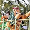 東京ディズニーランドでお正月 / New Year at Tokyo Disneyland