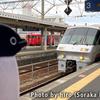 南九州の特急(みんなの九州きっぷ、旅行記を強引に終了)