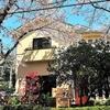 【オススメ5店】伊豆・伊東・下田(静岡)にある創作和食が人気のお店