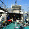 慶良間諸島の調べ